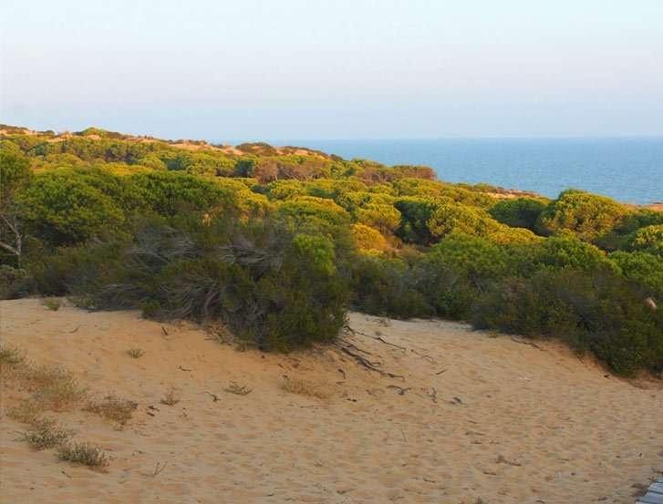Sendero Cuesta Maneli Huelva