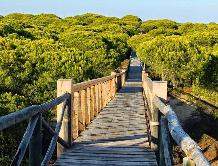 Sendero Dunar Doñana Huelva