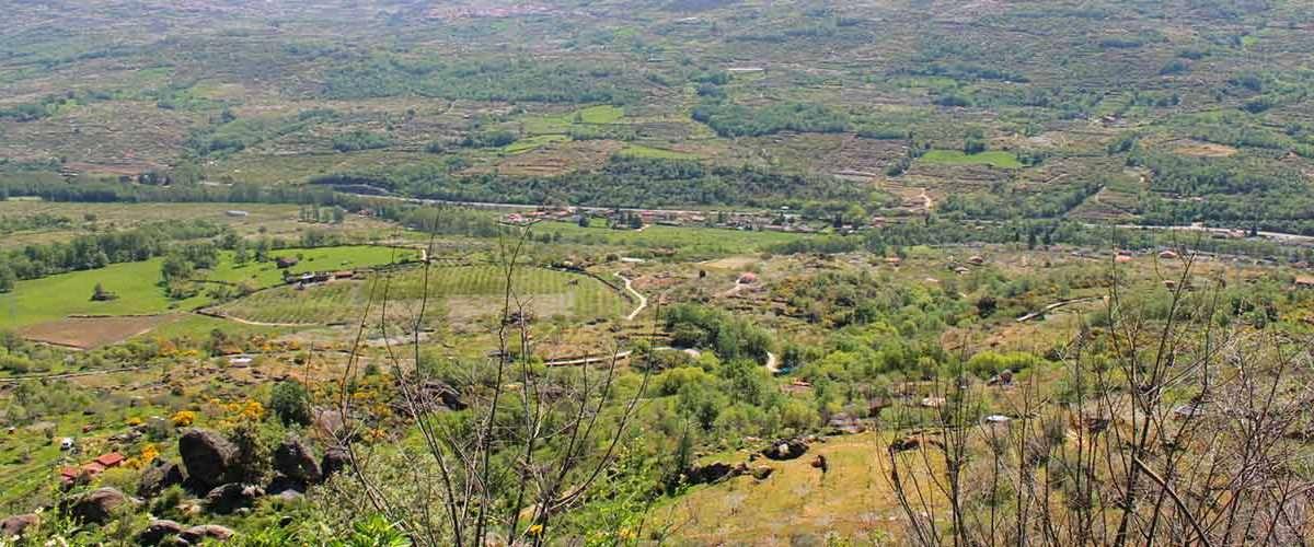 Recorriendo el Valle de Jerte II