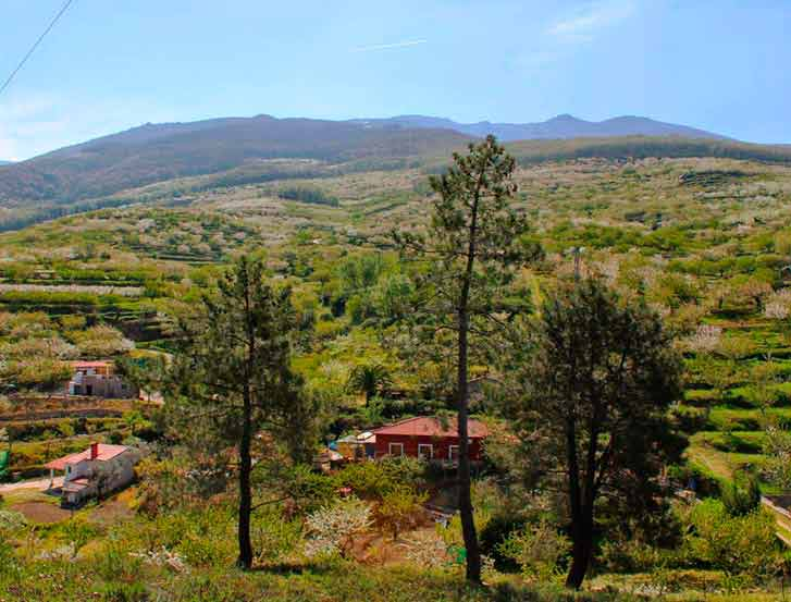 Valle de Jerte