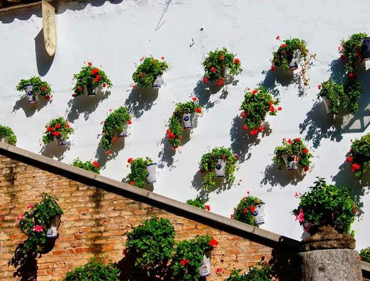 Zoco de Córdoba