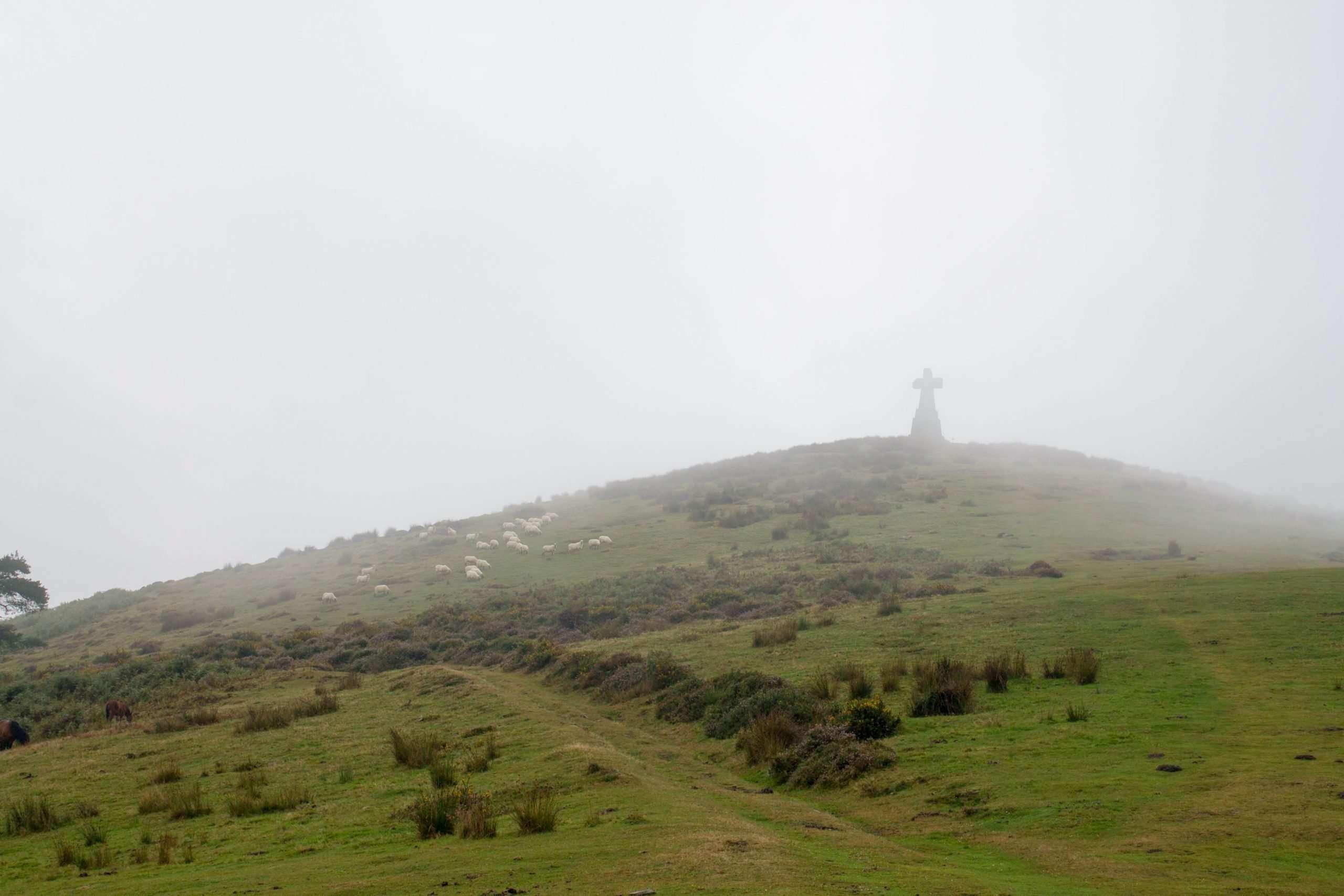 cruz del monte saibi