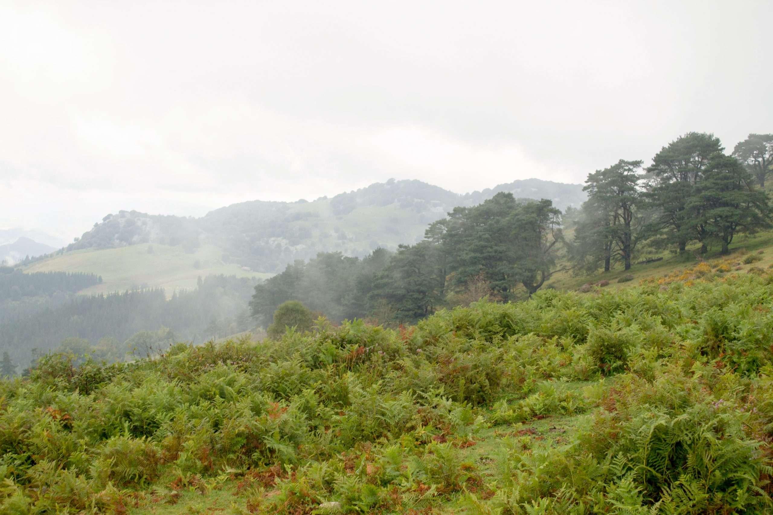 sendero parque natural urkiola